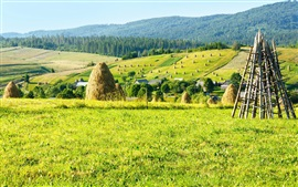 Farm field, hay, trees, mountains, houses, Ukraine, Carpathians