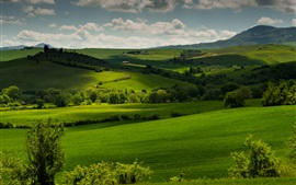 Preview wallpaper Italy, Tuscany, green fields, trees, clouds, dusk