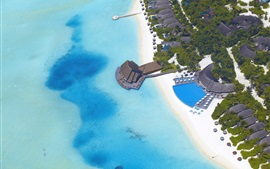 Maldives, bungalow, palm trees, sea, ocean, resort, top view