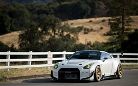 Nissan GT-R white supercar front view