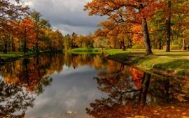 壁紙のプレビュー 公園、木、川、水、秋
