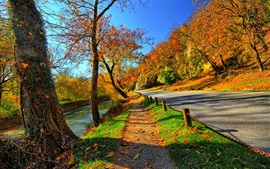 Preview wallpaper Park, trees, road, autumn, sunshine