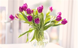 Preview wallpaper Purple tulips, bouquet, vase
