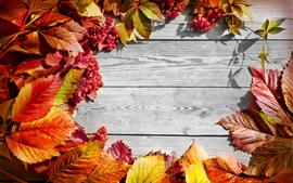 Red leaves, berries, wooden board, autumn