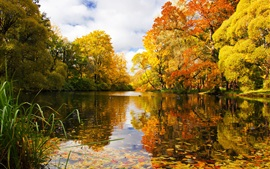 Preview wallpaper Russia, Saint Petersburg, park, pond, trees, autumn