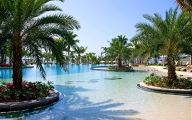 Sanya, resort, pool, palm trees, sea, China