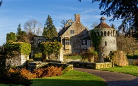 Scotney Castle, England, trees, grass, sunshine