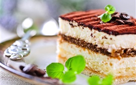 Preview wallpaper Snack, tiramisu, sweet cake, chocolate, mint, breakfast