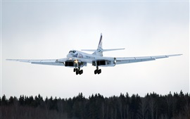 Preview wallpaper Tu-160 long-range bombers