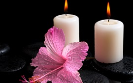White candles, fire light, hibiscus flower, water drops