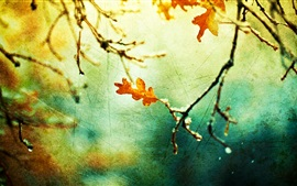 Preview wallpaper Autumn, leaf, twigs, canvas style