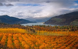 Preview wallpaper Autumn, river, trees, mountains, clouds
