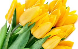 Preview wallpaper Bouquet yellow tulips