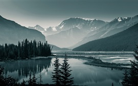Canada Banff National Park, Albert, trees, mountains, lake, dawn
