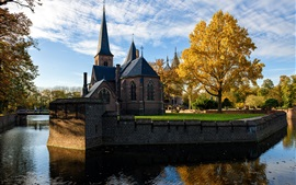 Cathedral, Netherlands, river, trees, autumn