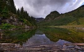 미리보기 배경 화면 새벽, 나무, 산, 호수, 물 반사, 구름, 안개, 콜로라도, 미국