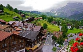 Preview wallpaper Grindelwald, Switzerland, town, road, valley, mountains, trees, clouds