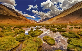 Preview wallpaper Ladakh, Jammu and Kashmir, mountains, swamp, grass, India