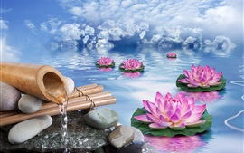 Preview wallpaper Lotus, stones, water, pink flowers, clouds, creative design