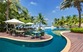 Maldives, pool, sun loungers, palm trees, resort