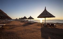 Mañana, costa, recurso, sombras, salida del sol, egipto