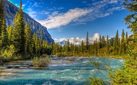 Mount Robson Provincial Park, Canada, trees, river, clouds