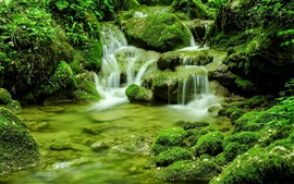 Preview wallpaper Nature scenery, moss, stones, stream, greens, Italy