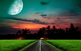 Night, moon, road, wheat field, trees, fire, red sky
