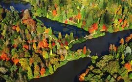 Парк Шеффилд осенью, деревья, вид сверху, Сассекс, Англия