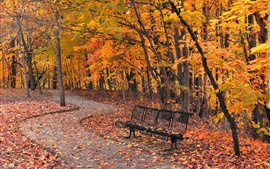 Preview wallpaper Park, bench, trees, path, red leaves, autumn