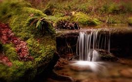 Швейцария, ручей, водопад, мох, природа