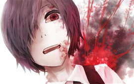 Tokyo Ghoul, Japanese anime