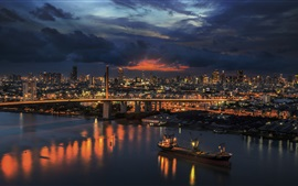 Travel to Thailand, Bangkok, river, bridge, skyscrapers, lights, night
