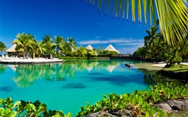 Preview wallpaper Tropical ocean, resort, palm trees, summer, hut