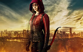 Willa Holland, Arrow Series de TV