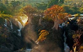 Africa Kunene river, waterfall, trees