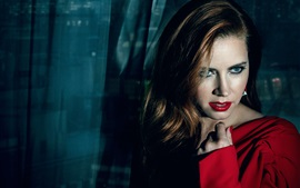 Preview wallpaper Amy Adams 08