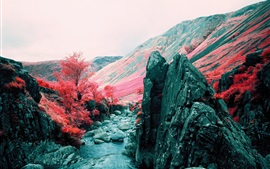 Autumn, mountains, grass, trees, rocks, red style