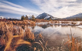 Preview wallpaper Banff National Park in winter, Alberta, Canada, lake, grass, mountain, snow