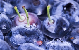 Preview wallpaper Blueberries macro photography