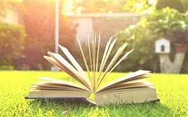 Preview wallpaper Book, grass, sunshine