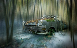 Broken car, skeleton, forest, creative picture