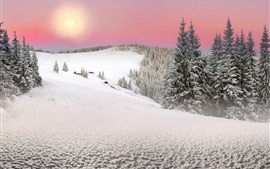 Preview wallpaper Carpathians, Ukraine, spruce, trees, winter, snow, sunset