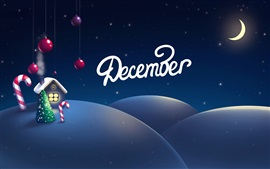 Christmas, New Year, night, moon, house, art picture