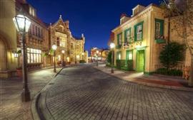Disneyland, calçada, rua, noite, luzes, casas, EUA