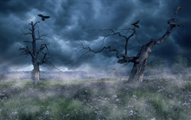 Preview wallpaper Fog, trees, clouds, grass, bird, dawn