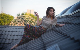 Preview wallpaper Girl drink wine on roof