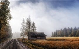 Preview wallpaper House, road, field, trees, fog, morning, autumn