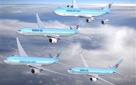 Korean Air, четыре самолета полета в небе