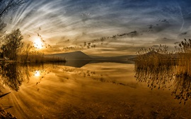 Озеро на закате, камыша, отражение воды